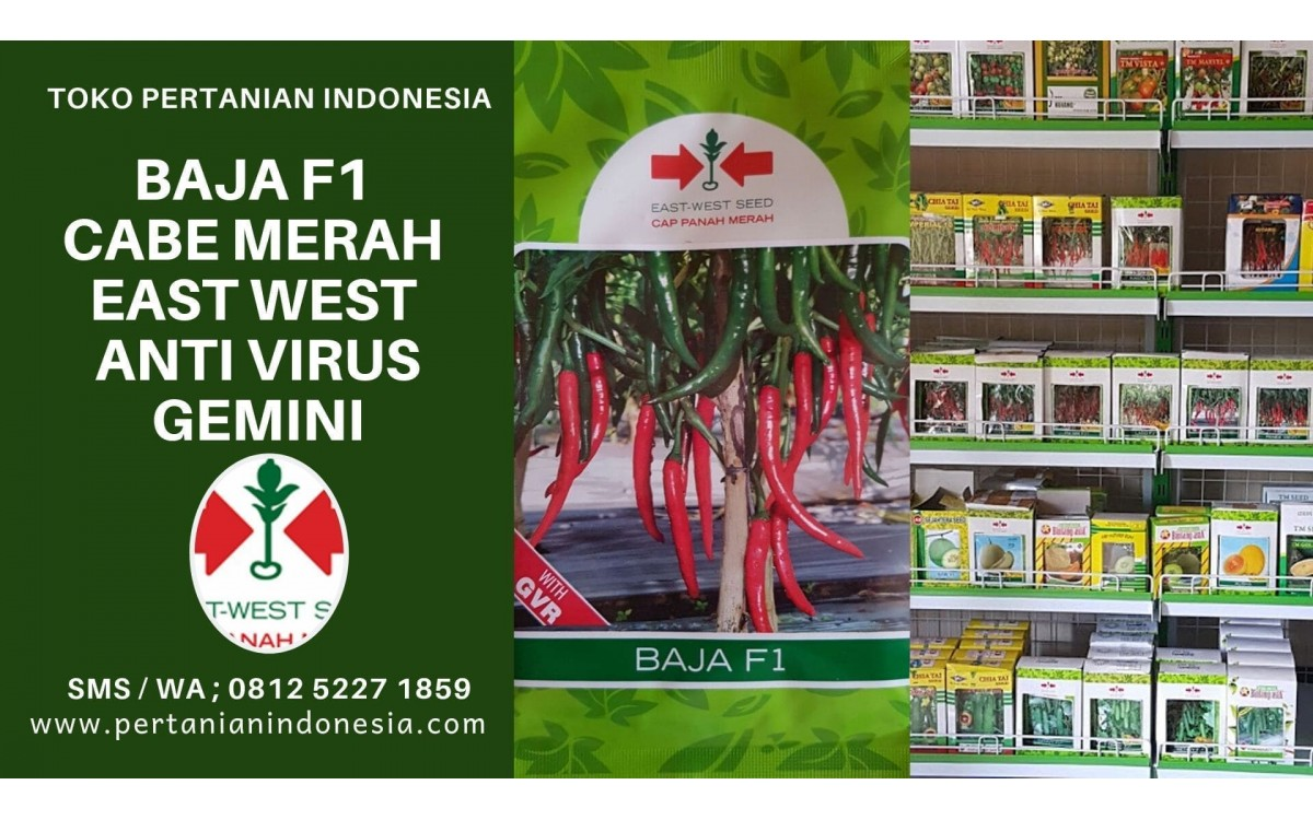 Baja F1 Cabe Merah East West Anti Virus Gemini