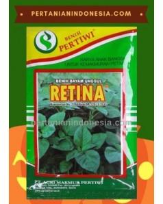Bayam Retina
