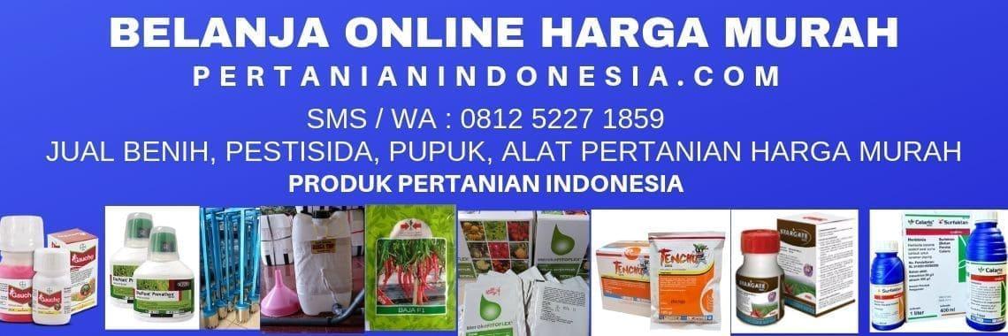 Belanja Online Harga Diskon