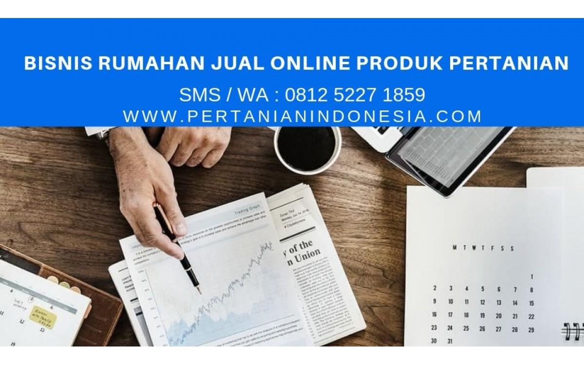 BISNIS RUMAHAN JUAL ONLINE PRODUK PERTANIAN DI INDONESIA