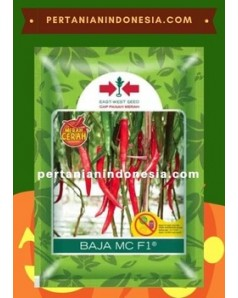 Benih Cabe Baja MC PT. East West Seed Indonesia (EWINDO)