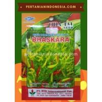 Cabe Bhaskara