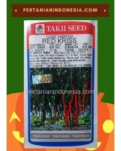 Benih Cabe Red Kriss