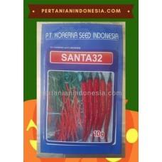 Cabe Santa 32