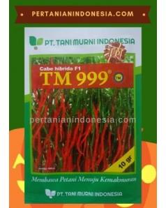 Benih Cabe TM 999