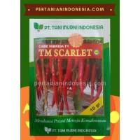 Cabe TM Scarlet