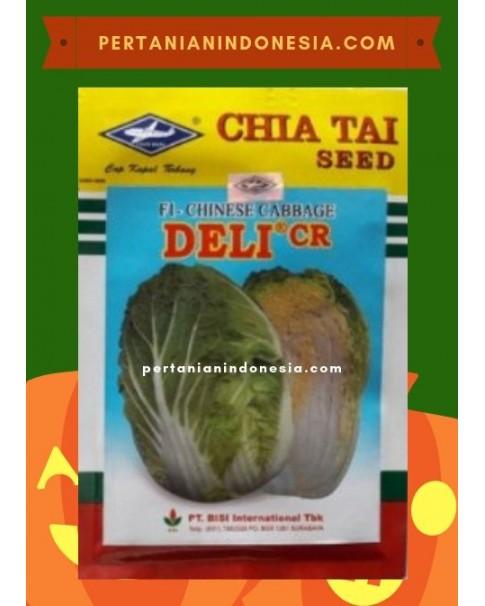 Benih Chinese Cabbage Deli CR