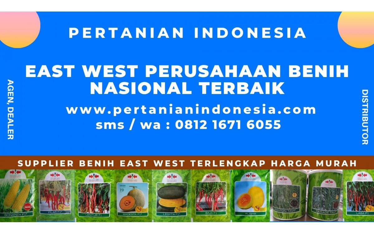 EAST WEST PERUSAHAAN BENIH NASIONAL INDONESIA TERBAIK