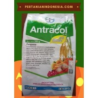 Fungisida Antracol 70 WP