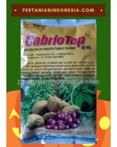 Fungisida CabrioTop 60 WG