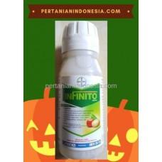 Fungisida Infinito Bayer