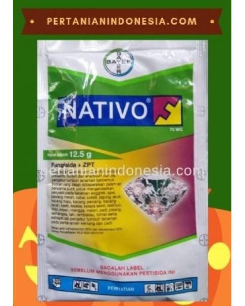 Fungisida Nativo Bayer