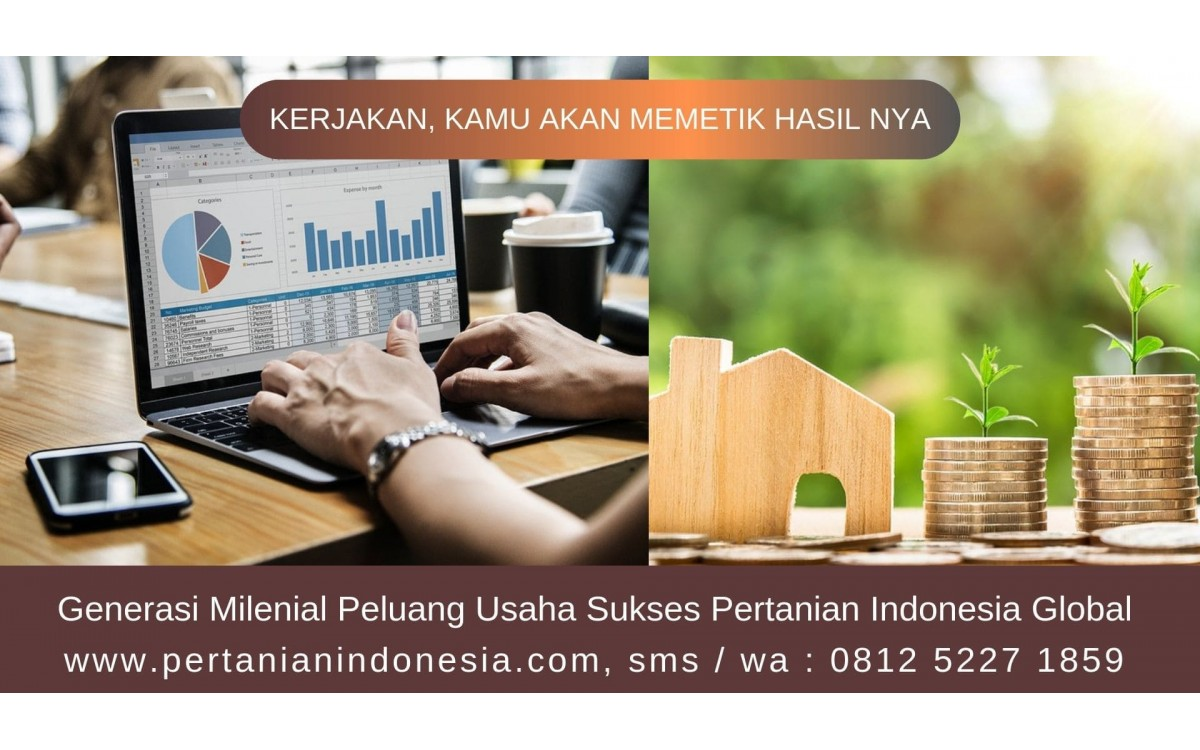 Generasi Milenial Peluang Usaha Sukses Pertanian Indonesia Global