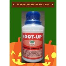 Hormon Root Up