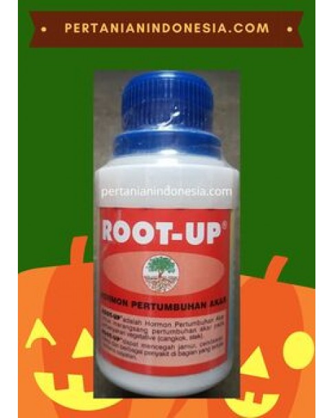 Hormon Root Up