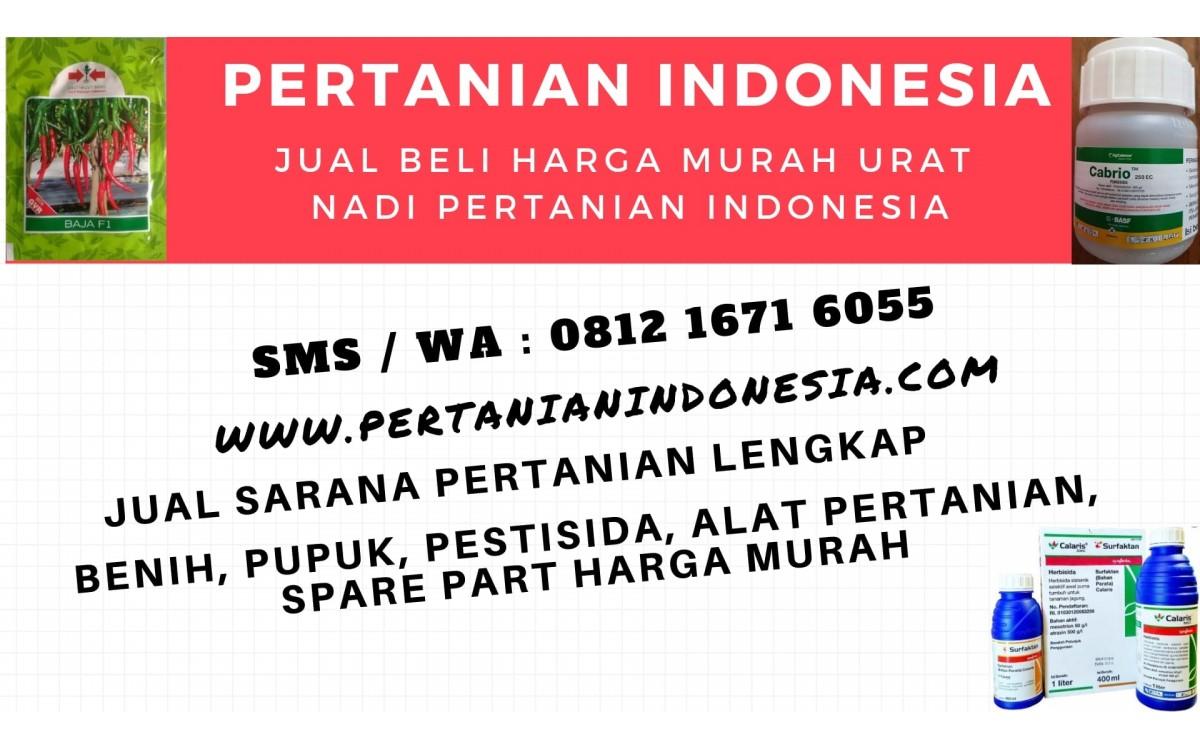 JUAL BELI ONLINE DI GOOGLE HARGA MURAH PERTANIAN INDONESIA