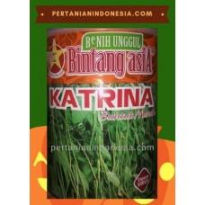 Kacang Panjang Katrina