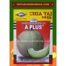 Melon A Plus