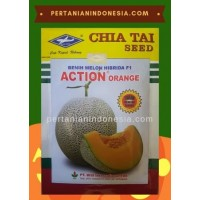 Melon Action Orange