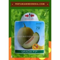 Melon Gracia