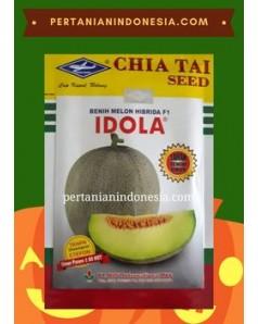 Benih Melon Idola