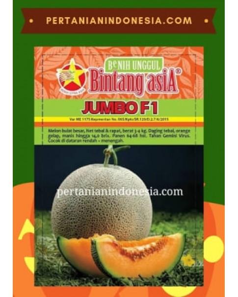 Benih Melon Jumbo