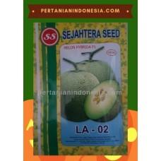 Melon LA 02
