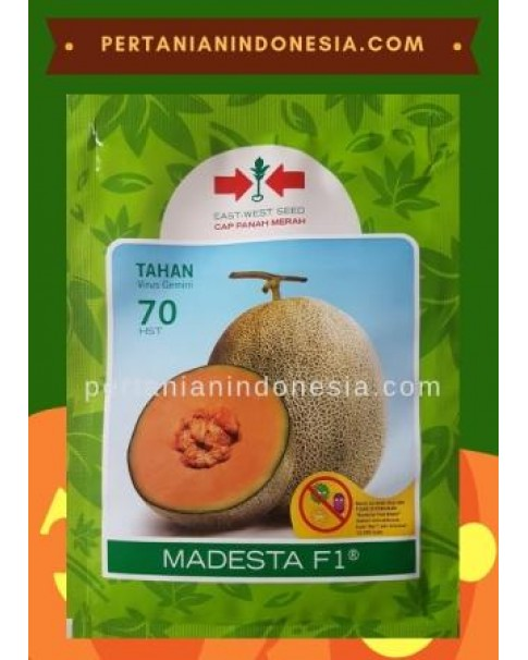Benih Melon Madesta 400 Butir