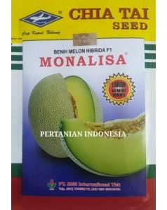 Benih Melon Monalisa