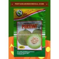 Melon Pertiwi Anvi