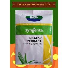NK Perkasa
