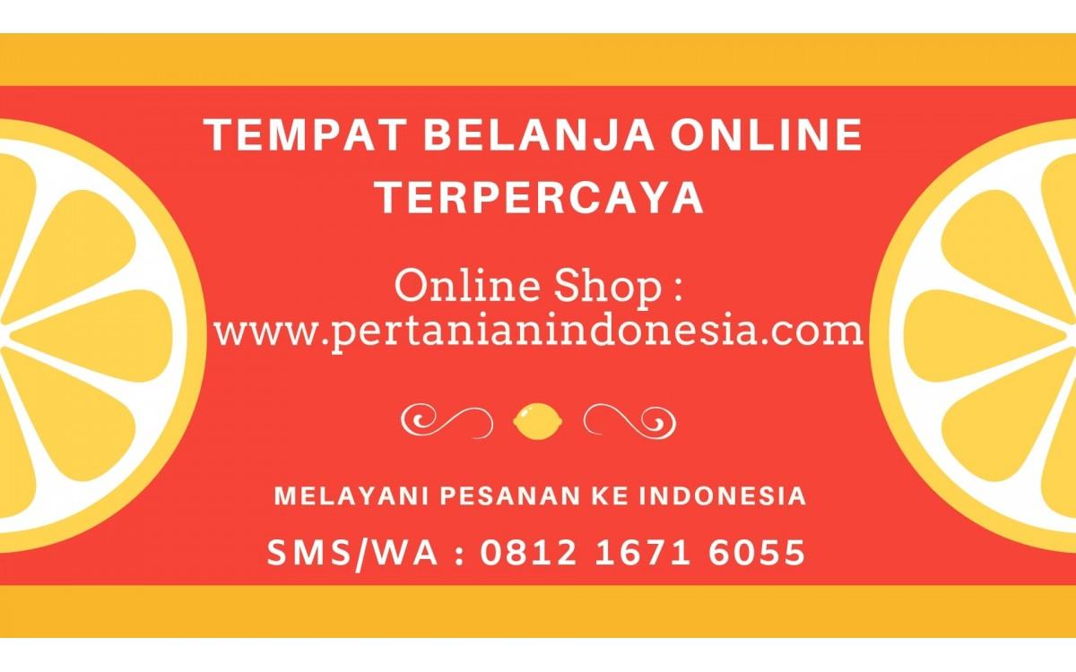 ONLINE SHOP PERTANIAN INDONESIA TEMPAT BELANJA ONLINE PETANI
