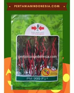 Benih Cabe PM 999