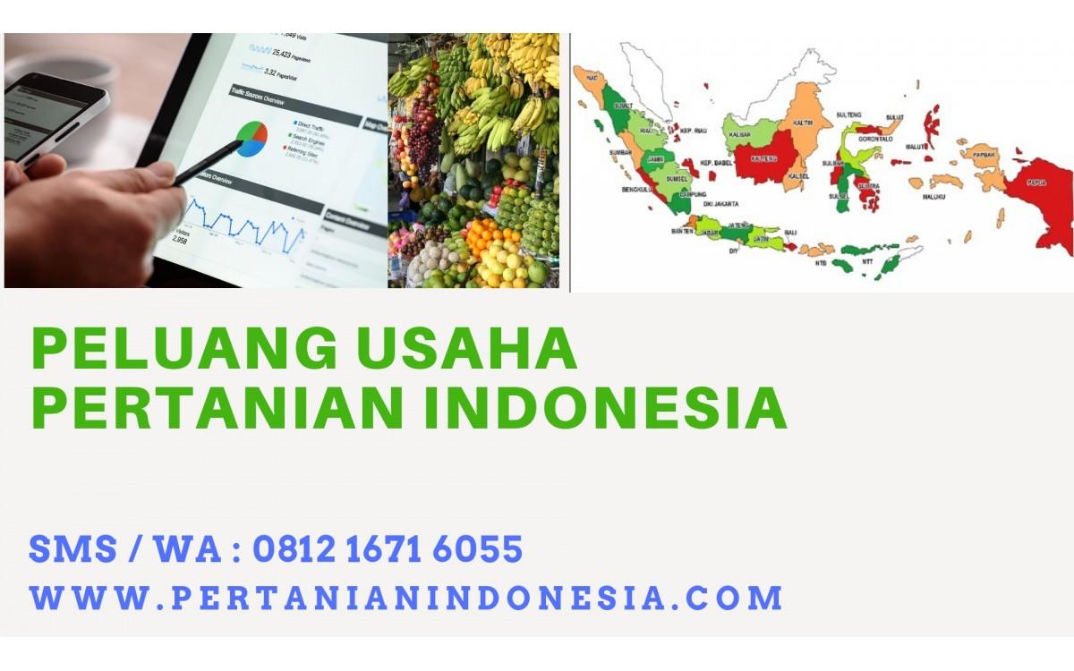 PELUANG USAHA PERTANIAN INDONESIA, BISNIS MASA DEPAN