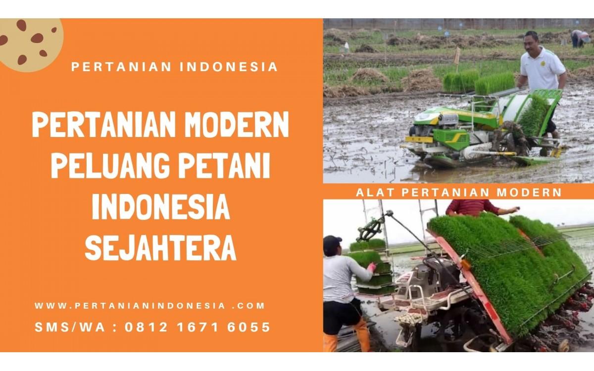 PERTANIAN MODERN PELUANG PETANI INDONESIA SEJAHTERA