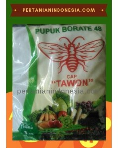 Pupuk Borate 48