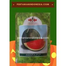 Semangka Amara