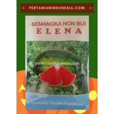 Semangka Elena