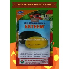Semangka Esteem
