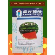 Semangka Factor