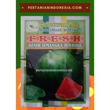 Semangka Fresh