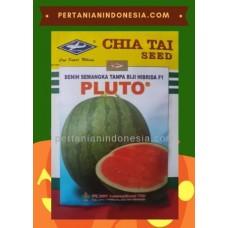 Semangka Pluto