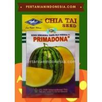 Semangka Primadona