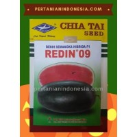 Semangka Redin 09