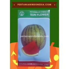 Semangka Sun Flower