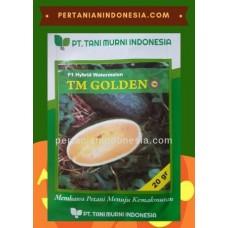Semangka TM Golden