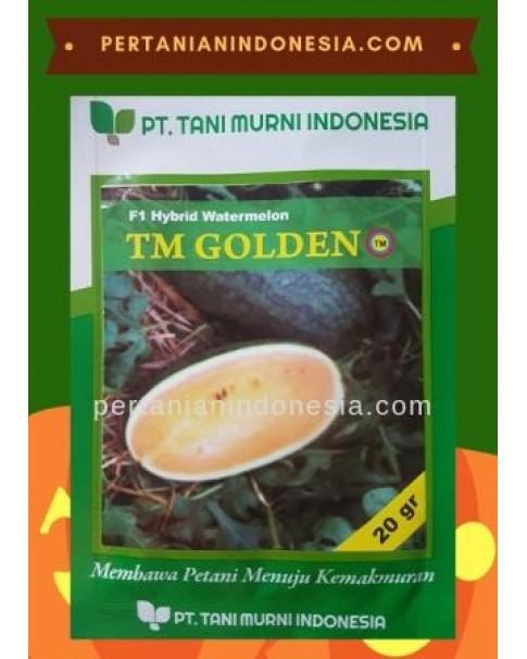 Benih Semangka TM Golden
