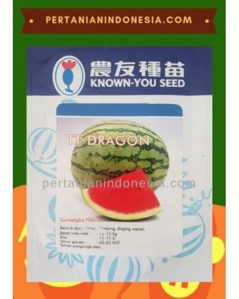 Benih Semangka TT Dragon