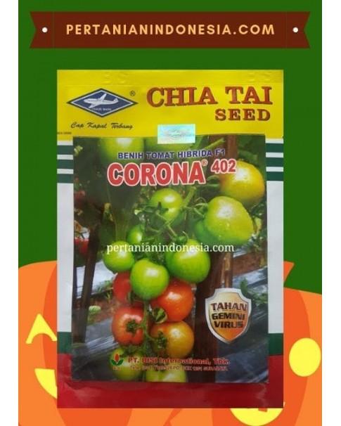 Benih Tomat Corona