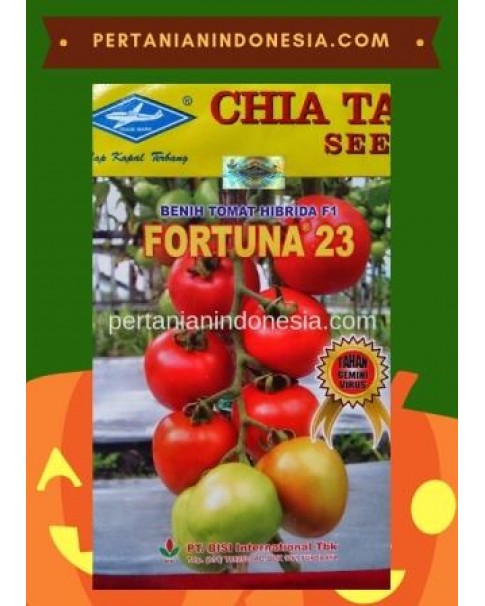 Benih Tomat Fortuna 23